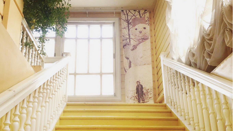 Metenkov House