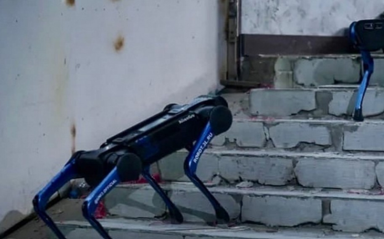 Robo-Belka and Robo-Strelka go for a walk. vdnh.ru