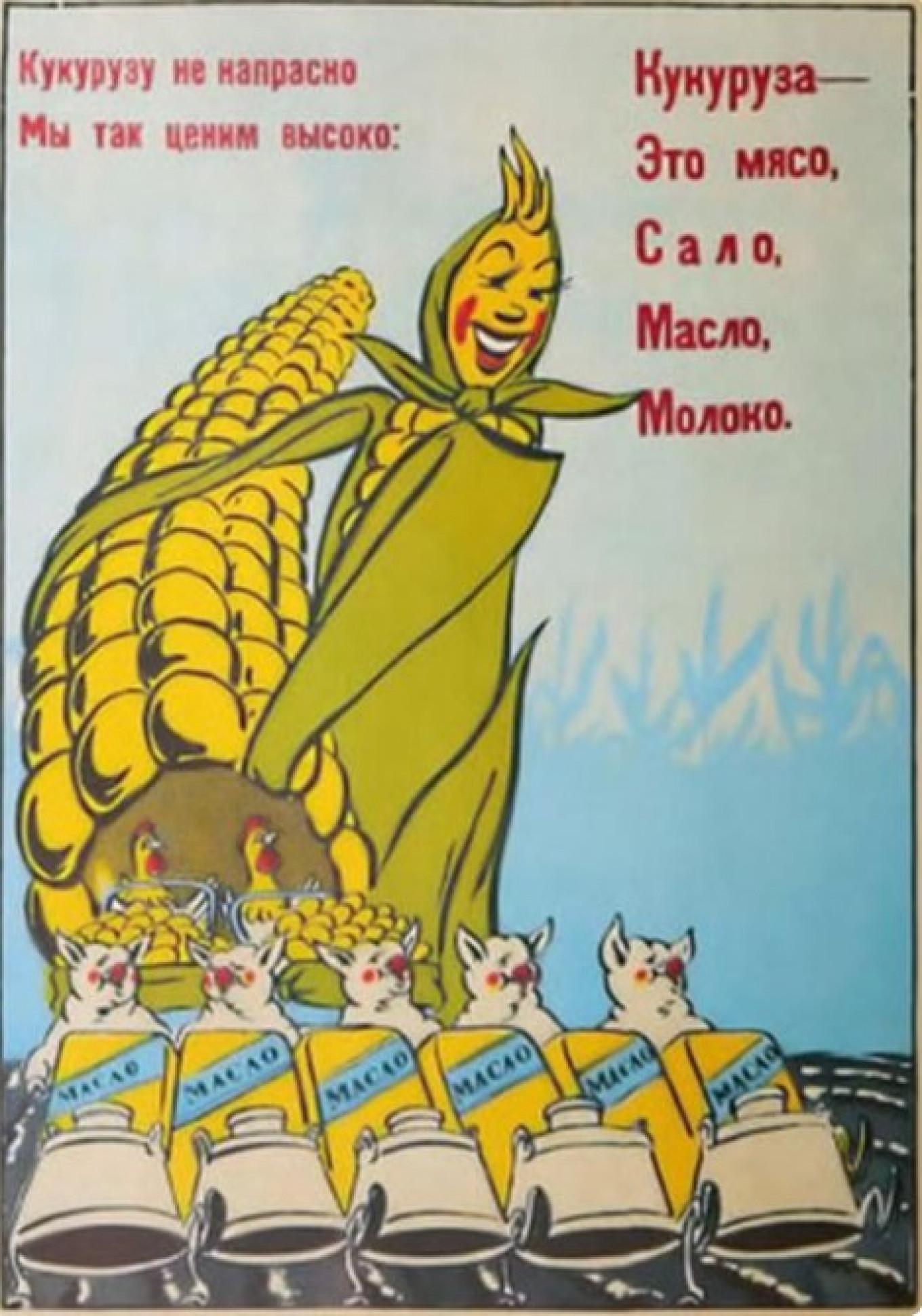 Corn for livestock poster