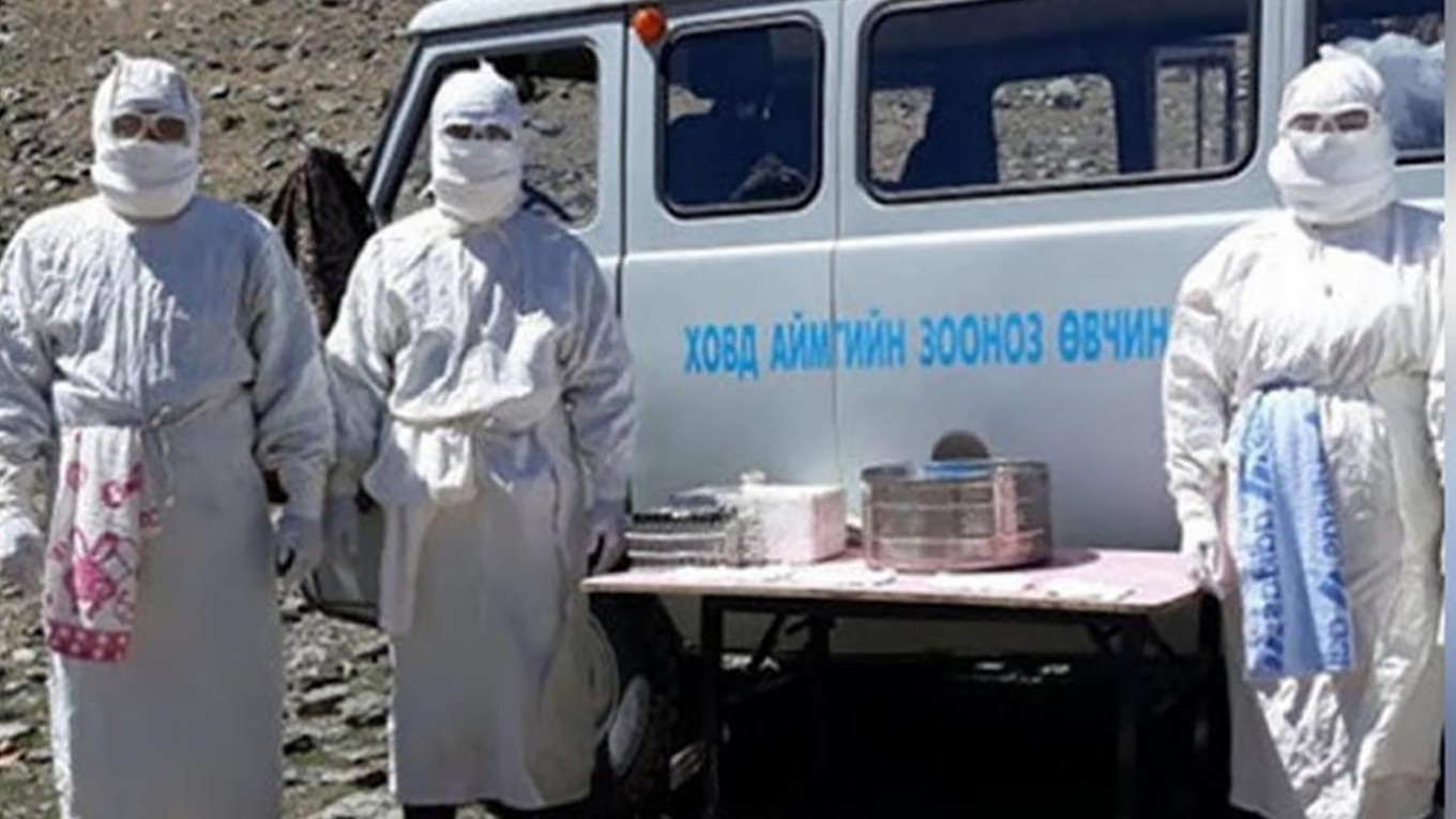 Mongolia Quarantines Russian Border Region Over Bubonic Plague Suspicion - The Moscow Times