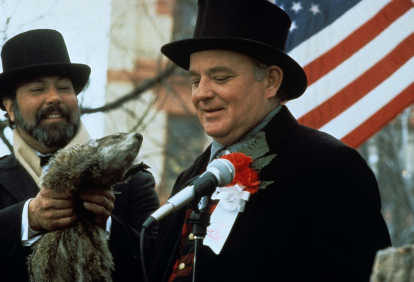 Punxsutawney Phil keeps popping out of his hole all day on Feb. 2. YouTube