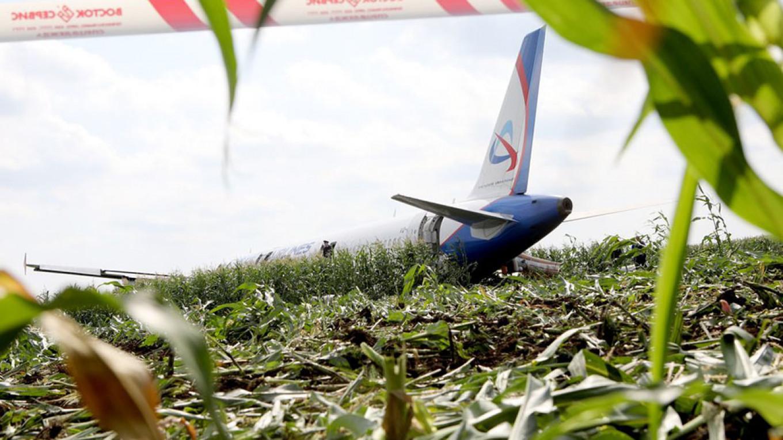 Moscow Passenger Plane Makes 'Miraculous' Crash-Landing in Cornfield