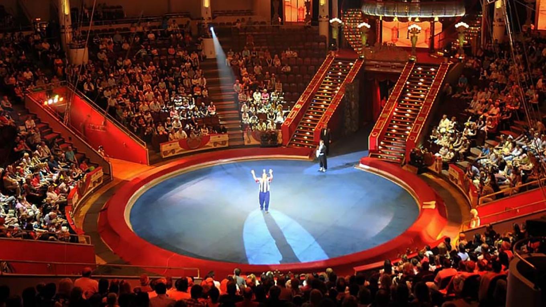 Nikulin Circus