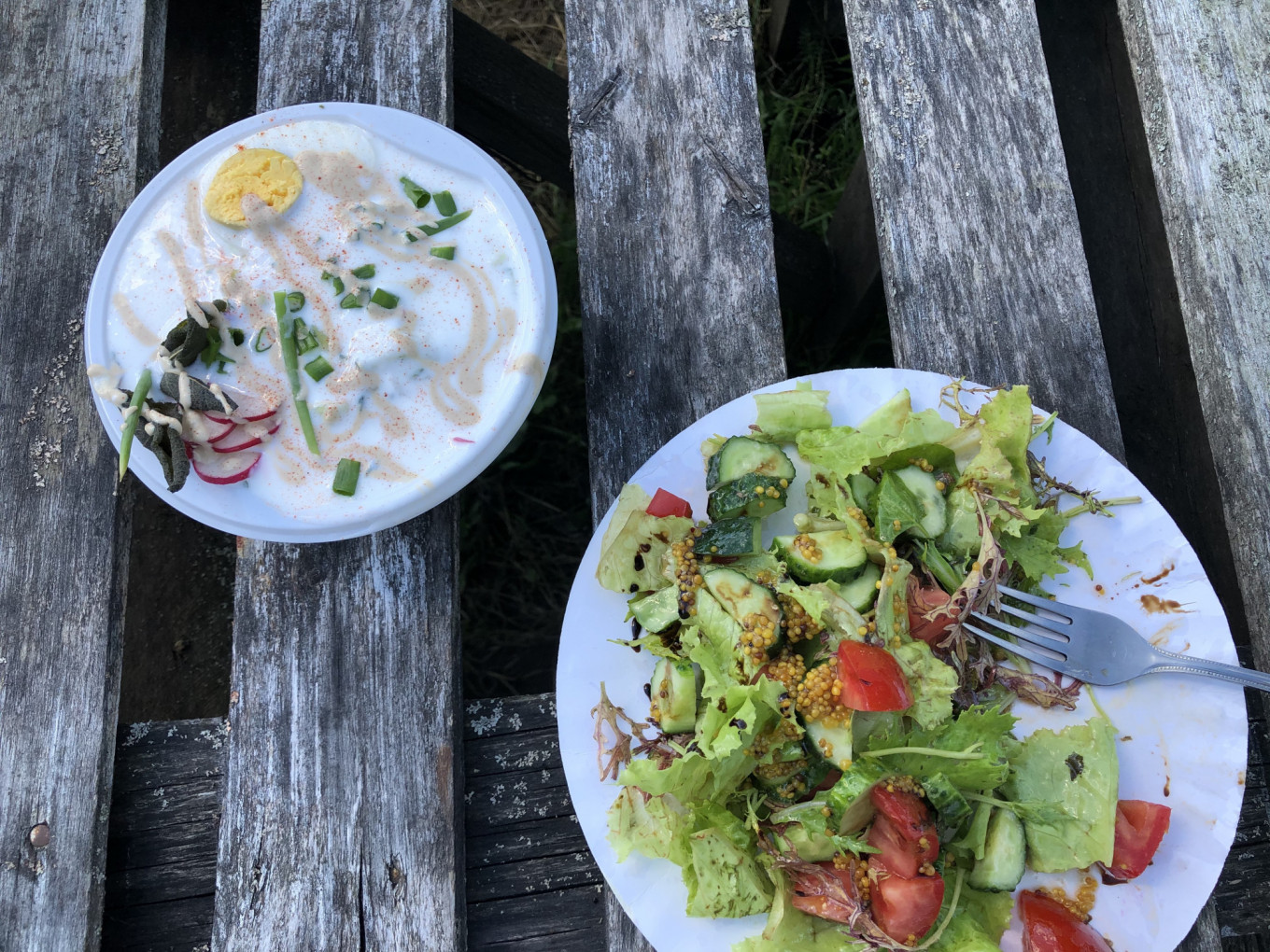 Lunch at the Ferma Cafe: Russian okroshka made with kefir and a fresh vegetable salad. Samantha Berkhead / MT