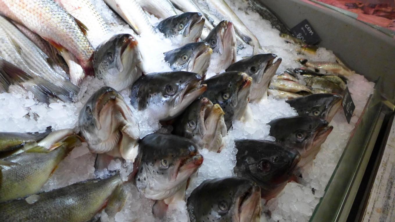 Make stock from fish heads. Jennifer Eremeeva / MT