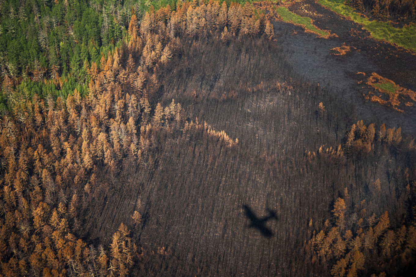 Teams track the fires by air and drop in by parachute or on off-road trucks. Dimitar Dilkoff / AFP