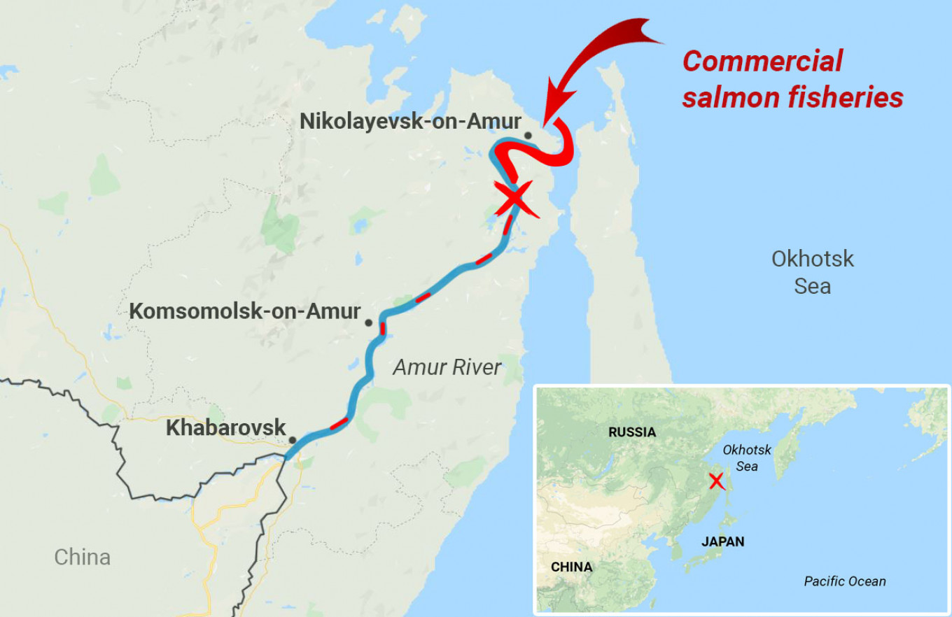 Indigenous groups blame commerical fisheries for depleting the Amur River's salmon stocks.  MT