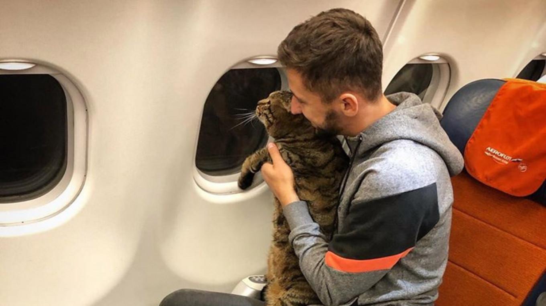 Viktor the Fat Russian Cat Slims Down Ahead of Next Trip