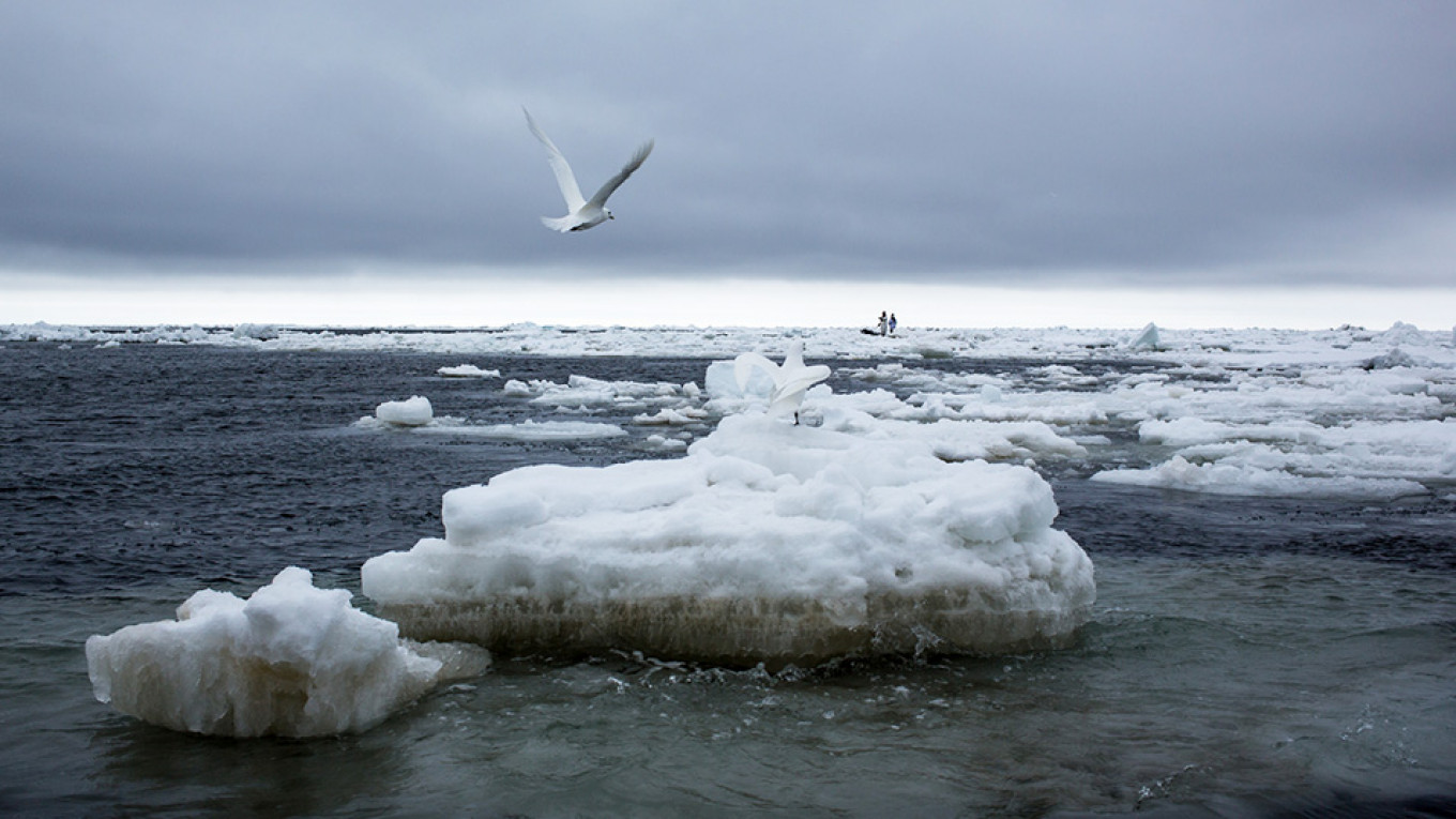 Sea Ice Between Alaska And Russia Shrinks at Record Rate in Middle of Winter