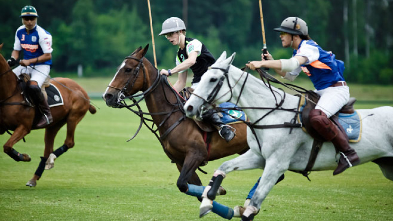 Image result for Polo Sports