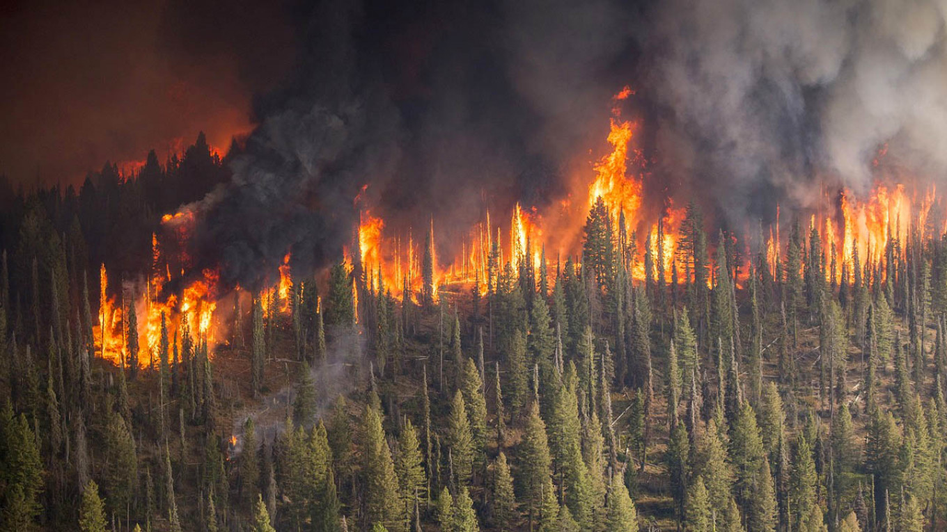 Russia Says Siberian Wildfires Started on Purpose by Illegal ...