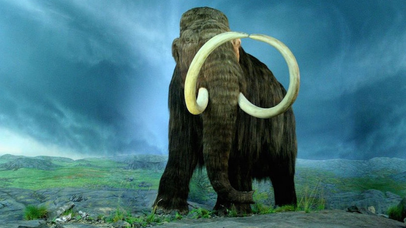 a948225e8c4 Ice Age Mammoth Hair Hat on Sale in Russia