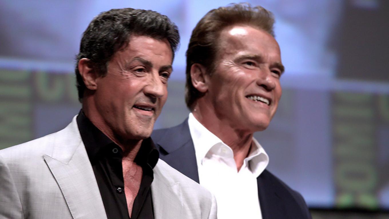Russian Instagram Users Unleash 'Cyberattack' on Stallone, Schwarzenegger